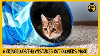 6 CringeWorthy Mistakes Cat Owners Make