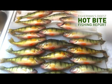 Trolling On Lake Erie For Walleye And Ice Fishing Reports - Hot Bite Fishing Report - Feb 5th