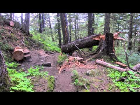 ALASKAN CRUISE VACATION: HIKING THE MOUNT ROBERTS TRAIL IN JUNEAU ALASKA!