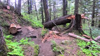 Hiking the Mount Roberts Trail in Juneau Alaska