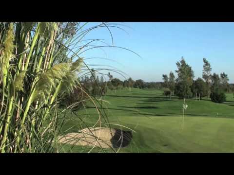 St'margarets Golf .divx