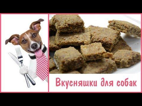 Как приготовить вкусняшки для собак