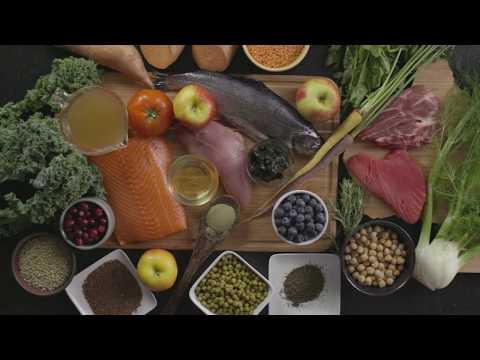 Dr Abby Huggins Discusses Pet Nutrition - Nulo Pet Food
