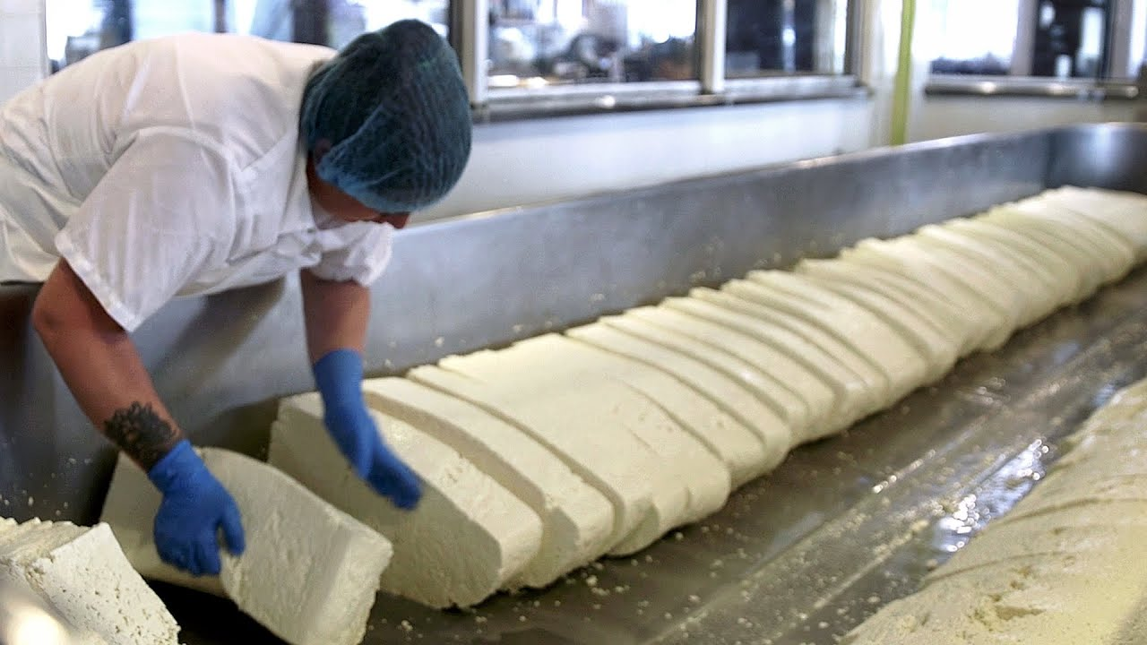 How Cheese Is Made