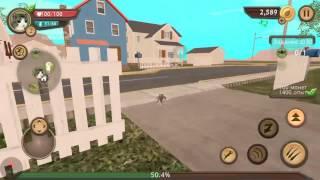 Новая игра ( симулятор кошки онлайн)