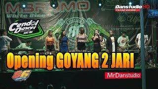 OPENING#GOYANG 2 JARI   ALL ARTIS MG 86 PRODUCTION LIVE IN JATISUMO  SAMBUNG MACAN SRAGEN HD
