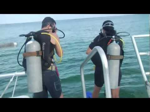 Scuba Diving In Cozumel Mexico- Why Its #1 | CozumelCruiseExcursions.NET