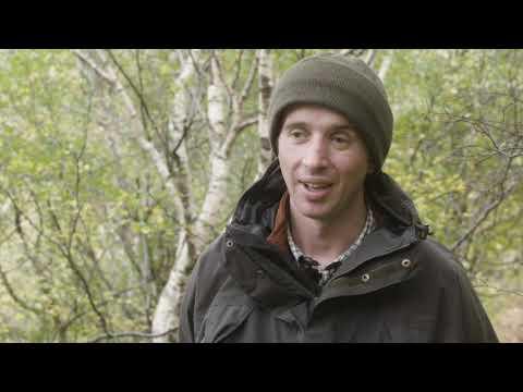 Woodland Trust Beinn Shieldaig Appeal