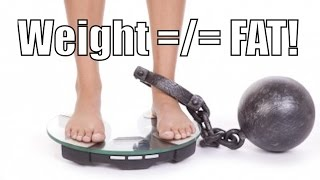 Weight Gain Does Not EQUAL Fat Gain!