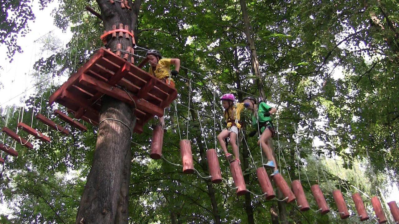 Картинки по запросу Веревочный парк «Тарзан-парк»