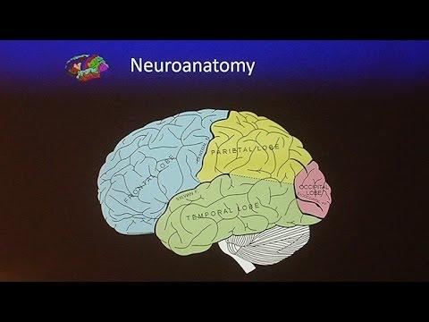 Living With Traumatic Brain Injury