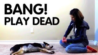 Teach dog to Play Dead!