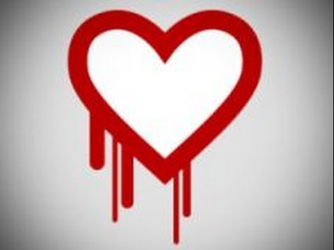 What is OpenSSL Heartbleed Bug