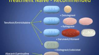 CM Meeting - HIV Treatment Guidelines Video - July 2015