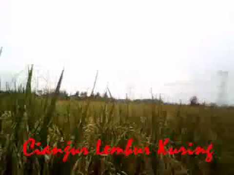 Cianjur Lembur Kuring (Lagu Pop Sunda Terbaru 2017)