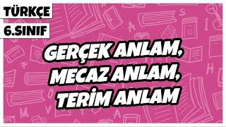 6. Sınıf Türkçe - Gerçek Anlam, Mecaz Anlam, Terim Anlam  2021