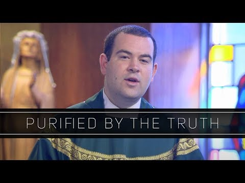 Purified by the Truth | Homily: Father Peter Stamm