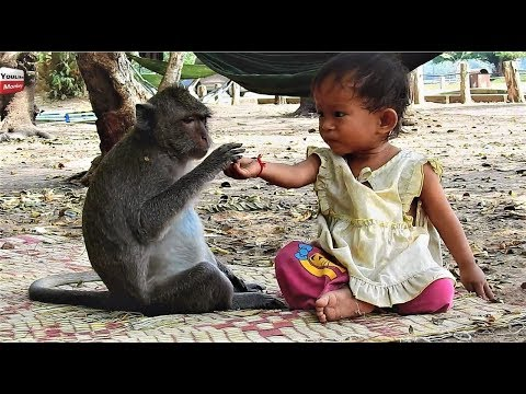 Strong Relationship Kid & Monkey/ Lovely friends Animals with humans Youlike Monkey 1302