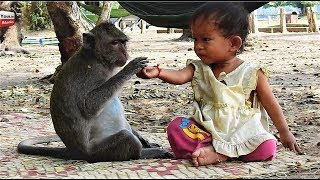 Strong Relationship Kid & Monkey/ Lovely friends Animals with humans Youlike Monkey 1302 thumbnail