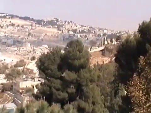 "Gene Williams-(Birkenstock)-"" Bethlehem-Jerusalem  & Cairo"""