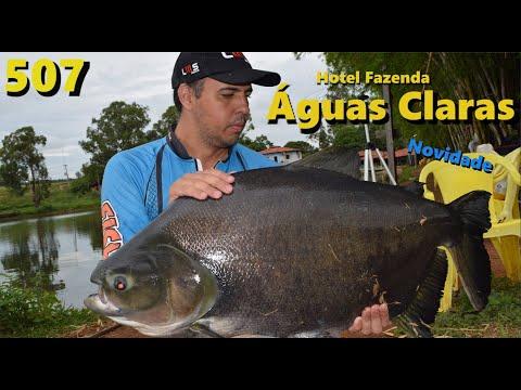 Hotel Fazenda Águas Claras - Pescaria com peixes bravos demais - Fishingtur 507