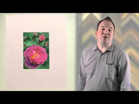 How To Choose Picture Frame Colors To Fit Picture Framing S