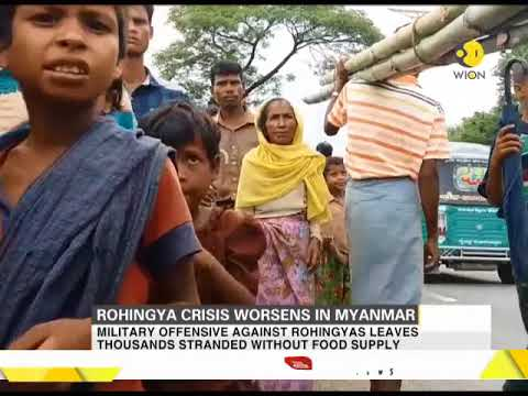 Rohingya crisis worsens as Myanmar blocks all UN aid for civilians