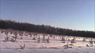 Покатушки на снегоходе Буран