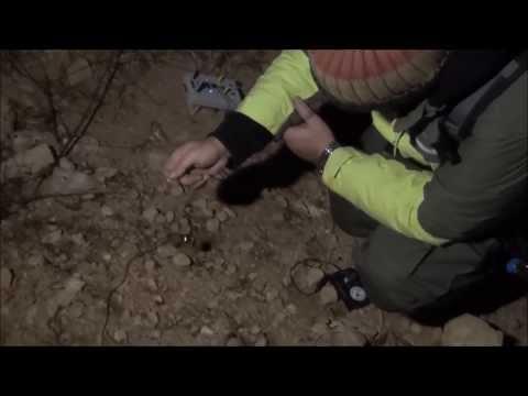 Ραβδοσκοπία & τεχνικές ανίχνευσης κρυμμένων θησαυρών