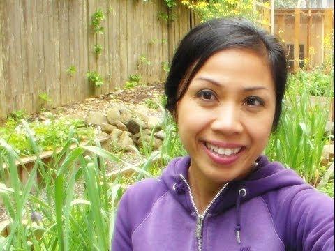 Vegetable Garden Update & Tips! May 24, 2014 Pacific Northwest Garden Mom