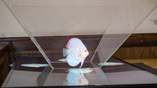 """Thử đồ chơi holograms cho màn hình 42"""""""