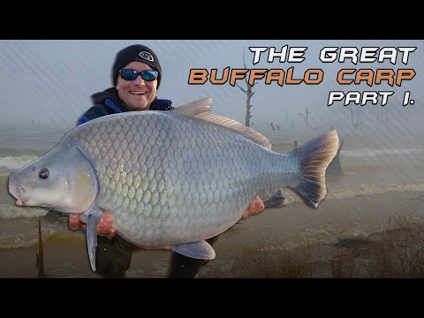 Wildwater Adventures part 22. The Big Buffalo Carp 1st episode