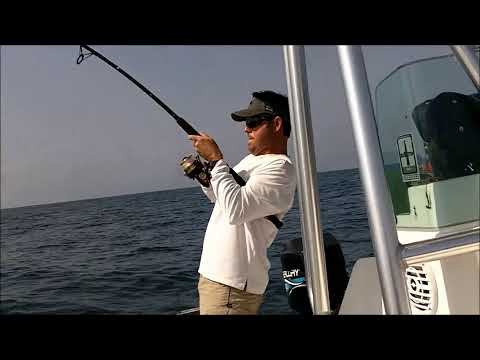 Last Local Guide Service, Panama City Beach, Florida- Offshore Fishing