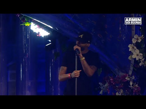 Mr. Probz - Waves (live performance) (Armin Van Buuren edit) @ Tomorrowland 2015