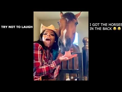 Try Not To Laugh Hood Vines Compilation 2019 part 3