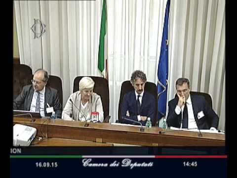 Roma - Audizione Direttore generale dell'Ebu-European Broadcasting Union, Deltenre (16.09.15)