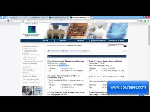 La Licence Professionnelle et le Diplôme DTS (OFPPT)