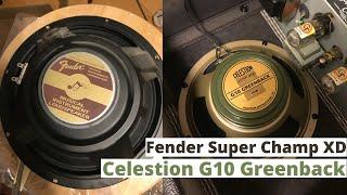 Fender Stock vs Celstion G10 Greenback (Fender Super Champ XD)