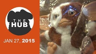 Gremlin in our Mail! | The HUB - JAN 27, 2015