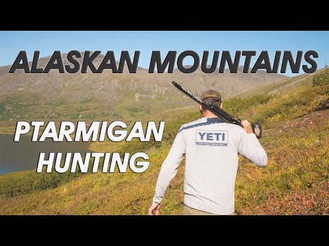 FLY OUT - Hunting Ptarmigan In The Mountains Of Alaska With Bonus Salmon Fishing