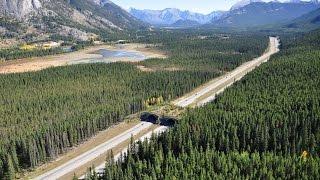 Канада 1004: Экология и глобальное потепление в Канаде