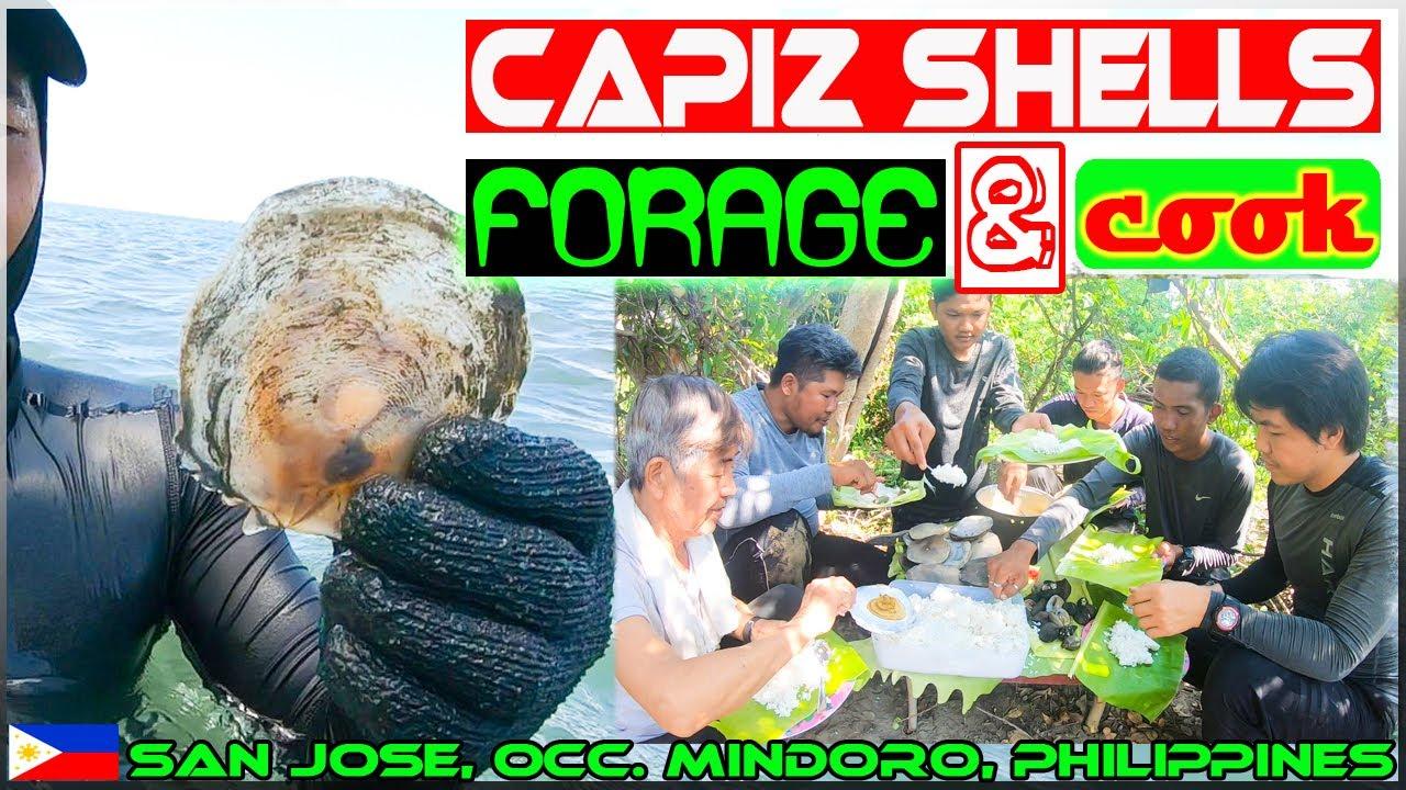 Download EP98 - Capiz Shells Forage and Wild Cook | Sinigang sa Kamatis | Occ. Mindoro