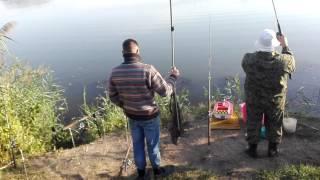 Прикормочный кораблик на рыбалке и поклевка амура