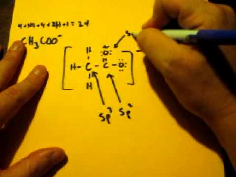 lewis dot structure of ch3coo acetate ion youtube