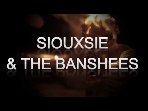 Siouxsie and The Banshees - Into The Light (Live-Lyrics) mp3