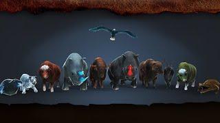 The Wolf game, Big Champs hunt screenshot 5