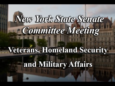 Senate Standing Committee on Veterans, Homeland Security and Military Affairs - 03/27/17