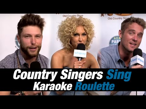 Country Singers Sing Karaoke Roulette at ACM Party for a Cause Festival | WHOSAY