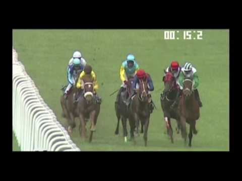 Yash Narredu travels to Ireland, The Preakness Stakes. Bangalore Races