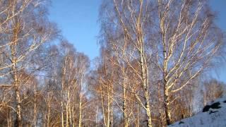 Красивая Музыка и Красивая Природа! Часть 1
